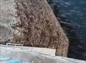 Telespectador grava a revoada de morcegos na Praia da Graciosa em Palmas - Telespectador grava a revoada de morcegos na Praia da Graciosa em Palmas