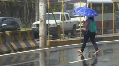 Apesar de riscos, pedestres continuam se arriscando ao atravessar fora da faixa - Avenidas da cidade registram grande número de acidentes.