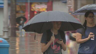 Cresce o número de casos de roubos de celulares em Campinas - No mês de julho deste ano, em 62% dos casos de roubos o aparelho de telefone da vítima foi levado pelo criminoso.