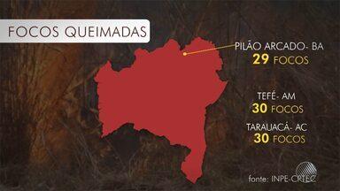 Tempo seco provoca aumento das queimadas no oeste e no norte baiano - A cidade de Pilão Arcado foi a segunda do país com mais focos de incêndio nas últimas 48 horas.