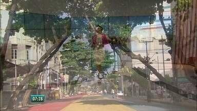App apresenta locais de importância literária no Recife - Tecnologia ajuda a conhecer cantinhos que tiveram significado especial para poetas e escritores da cidade