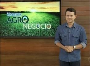Momento do Agronegócio destaca o preço do feijão que deve estabilizar em setembro - Bazar solidário ajuda população de baixa renda na reforma da casa