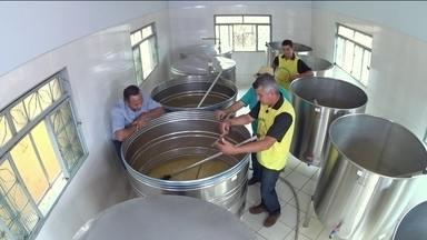 Hoje é dia de cachaça: da cana ao copo - Alexandre Henderson vai mostrar as etapas da produção da cachaça, desde cortar a cana até engarrafar a bebida.