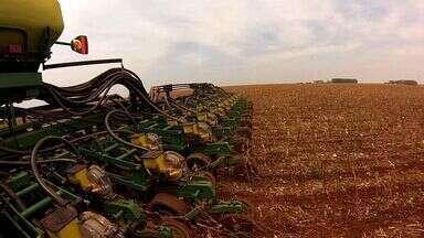 Produção brasileira de grãos encolhe 10% - Último levantamento da Conab confirma o tamanho do impacto da seca na safra 15/16. Em MT a queda foi de 16%.