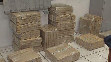 Polícia apreende mais de 300 kg de maconha nesta sexta-feira - Entorpecente estava dentro de estacionamento, na cidade de São Vicente.