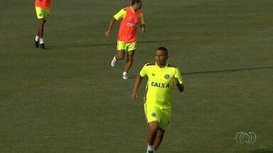 Com estreias, Goiás recebe o Ceará e precisa da vitória - Jogo deste sábado marcará primeira partida de Márcio e Gilson Kleina pelo Verdão. Walter faz primeiro jogo em Goiânia depois de voltar ao time esmeraldino.
