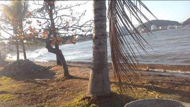Tempo: Semana termina com oscilação de temperatura - Veja também: maré alta alaga ruas do litoral.