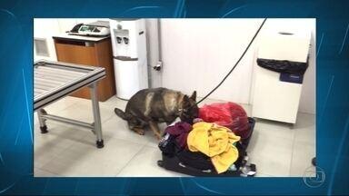 Homem suspeito de ingerir cápsulas com cocaína é preso no aeroporto de Confins - Os policiais desconfiaram dele durante fiscalização no momento em que ele fazia o check-in. Ele ia embarcar para Lisboa.