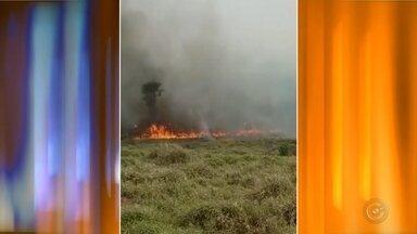 Bombeiros controlam incêndio após cinco horas em Paulistânia - Um incêndio em uma área rural de Paulistânia (SP) foi controlado pelo Corpo de Bombeiros de Cabrália Paulista após cinco horas. Segundo a corporação, o fogo começou durante o período da manhã.