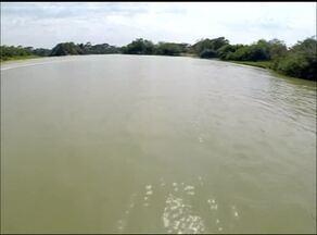 Veja terceira reportagem da série Rio sem água, natureza sem vida - Veja terceira reportagem da série Rio sem água, natureza sem vida