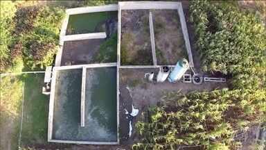 Tecnologia é usada para transformar o esgoto doméstico em água boa para irrigação - O projeto, no interior de Pernambuco, ajuda a produzir fartura mesmo nos períodos mais severos da estiagem.