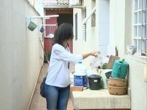 Municípios da região realizam mutirão contra a dengue - Atividades são realizadas nesta sábado (22).