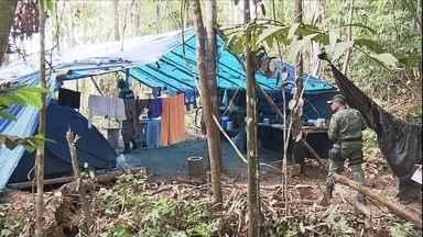 Fiscalização em áreas desmatadas gera tensão entre fiscais do IBAMA - Foram feitos flagrantes de uma fiscalização para surpreender desmatadores em Lábrea, no Amazonas.