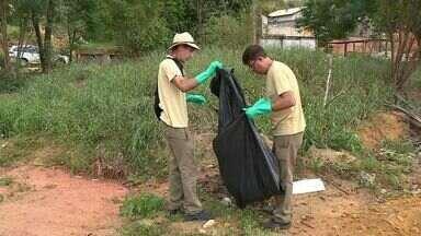Três regiões recebem mutirão contra foco do mosquito da dengue em Cachoeiro, ES - Mais de 9.200 pessoas tiveram dengue em Cachoeiro esse ano.