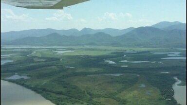 Ministério Público quer saber o tamanho do desmatamento no Pantanal de MS - Além de saber quais as proporções do desmatamento no Pantanal sul-mato-grossense, o MP ainda quer analisar licenças ambientais. O trabalho tem o apoio da secretaria de Meio Ambiente do estado.