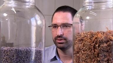 Empresário cria temperos exóticos com base em especiarias da Índia - Um dos temperos usa cardamomo, gengibre, erva-doce e pimenta. Em 2015, loja de especiarias registrou faturamento de R$ 180 mil.
