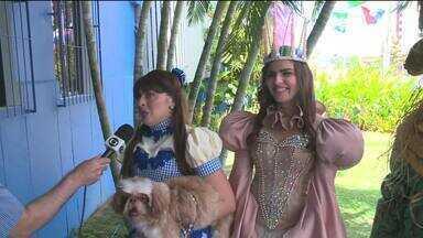 Grupo teatral apresenta espetáculo O Mágico de Oz em Maceió - Evento acontece no domingo.