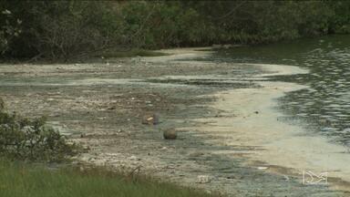 Poluição provoca morte de peixes na Lagoa da Jansen - Poluição provoca morte de peixes na Lagoa da Jansen