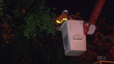 Galhos atingem rede elétrica na avenida Paraná durante chuva em Foz - A copel e os bombeiros foram chamados para retirar os galhos e restabelecer a energia.
