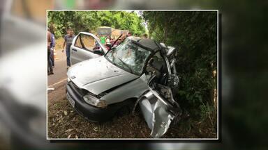 Seis pessoas morreram em acidentes no Paraná - Em Cascavel, uma garota de 14 anos morreu na BR-369.