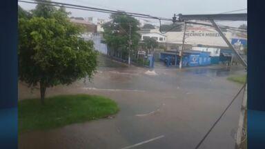 Lavras e Alfenas registram alagamentos após chuva forte nesta segunda-feira (12) - Lavras e Alfenas registram alagamentos após chuva forte nesta segunda-feira (12)