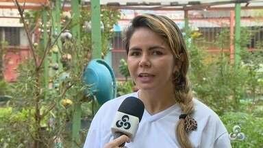 Em Manaus, projeto arrecada brinquedos para crianças carentes - Ação é realizada por um grupo de amigo.
