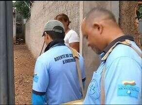 Registros de casos de dengue deixam moradores de Araguaína em alerta - Registros de casos de dengue deixam moradores de Araguaína em alerta