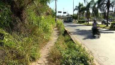 Lixo e vegetação invadem calçadas ao longo da BR-262, em Cariacica, no ES - Situação é observada no trecho entre Jardim América e Campo Grande.