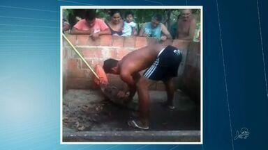 Jacaré de quase dois metros é achado em área urbana de Caucaia - Moradores do Bairro Santa Rosa relatam susto que tomaram ao avistar o animal.