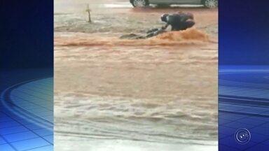 Moto é arrastada pela enxurrada após avenida em Bauru alagar - Uma moto foi arrastada pela enxurrada durante a chuva que alagou a Avenida Nações Unidas, em Bauru (SP), na tarde desta quarta-feira (18). O veículo foi levado no cruzamento da avenida com a Rua Caetano Sampieri.