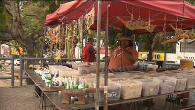JPB mostra tradição de ervas medicinas na cultura indígena - Um especialista falou sobre o assunto.