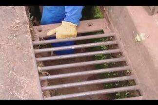 Após alagamentos, Dmae faz vistoria no Bairro Morumbi em Uberlândia - Bairro da zona leste foi o mais atingido durante chuvas nesta semana. Moradores reclamam e limpeza está programada para próxima segunda-feira (23).