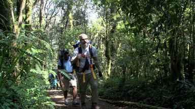 Kilimanjaro (Parte 2)