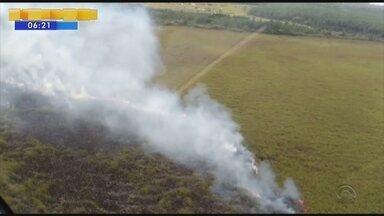 Perícia deve apontar causas do incêndio no Parque da Serra do Tabuleiro, em Palhoça - Perícia deve apontar causas do incêndio no Parque da Serra do Tabuleiro, em Palhoça