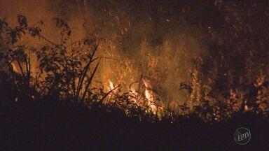 Incêndio deixa moradores assustados em um condomínio em Ribeirão Preto, SP - Fogo atingiu área que fica ao lado da Rodovia Anhanguera, no sentido Jardinópolis (SP).