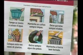 Dia D de combate ao mosquito Aedes Aegypti mobiliza município de Santa Rosa, RS - Ações serão realizadas durante todo o dia.