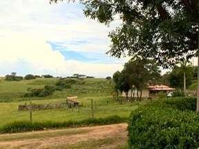 Produtores rurais devem ficar atentos aos prazos da Dipam - Declaração traz benefícios para o homem do campo.