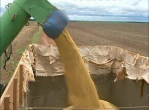Governo Federal tem boas expectativas para safra de grãos em 2017 - Governo Federal tem boas expectativas para safra de grãos em 2017