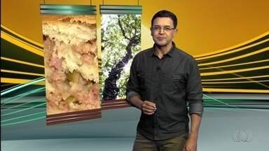 Confira o que é destaque no Jornal do Campo de domingo (19) - Quadro Receitas do Campo ensina a fazer pão recheado.