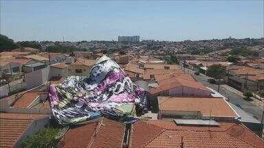 Balão cai em cima de casas em Campinas - Oito pessoas foram detidas e por pouco o balão não pegou fogo.