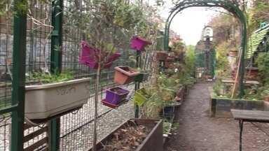 Hortas coletivas em Paris - Eles plantam em áreas que estavam abandonadas