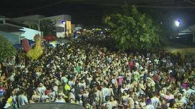 Bloco Galo da Meia animou milhares de foliões pelas ruas de Porto Velho - Tradicional bloco de Carnaval desfilou pelo 25º ano.