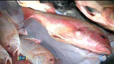 Início da Quaresma movimenta Mercado do Peixe em Teresina - Início da Quaresma movimenta Mercado do Peixe em Teresina