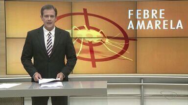 Febre amarela é confirmada em oito cidades do Sul do ES - Estado teve 78 casos confirmados da doença.