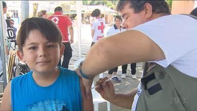 Trinta cidades do Paraná começam vacinação contra a dengue - Essa é a segunda etapa de vacinação nas cidades mais atingidas pela doença.