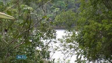 Linhares é o município do ES que mais perdeu florestas - Informação foi divulgada pelo SOS Mata Atlântica.