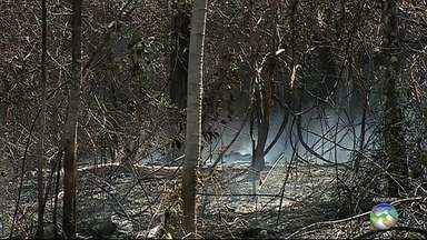 'Desova' de carros e motos na Serra dos Cavalos preocupa ambientalistas e moradores - Carros e motos estão sendo queimados no local, segundo ambientalistas.