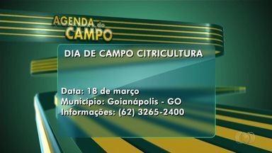 Veja a Agenda do Campo para esta semana em Goiás - Confira eventos interessantes para produtores rurais.