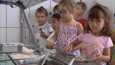 Escolas de Blumenau preparam merenda a partir da produção de agricultores familiares - São pelo menos 19 famílias que produzem frutas, legumes e verduras.