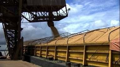 PR e MT usam diversos meios de transporte para escoar a safra de soja - Em Mato Grosso, a colheita da soja está na reta final e, pelo menos, metade da produção deve seguir para o mercado externo. No Paraná, a maior parte do milho e da soja é transportada por caminhões.